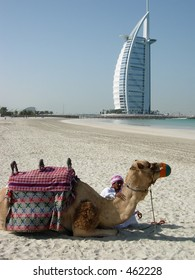 A Camel and an Arab posing in front of a luxurious hotel in dubai