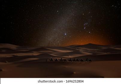 Camel caravan in the desert under the stars