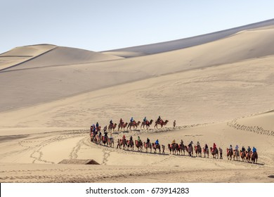 Camel caravan in Gobi desert in Dunhuang