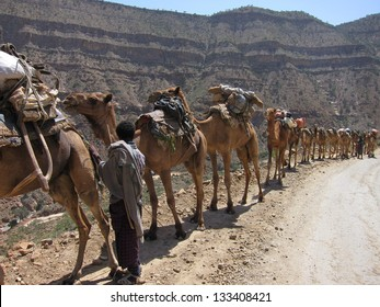 A camel caravan hauls supplies to miners digging salt in the desert of Ethiopia