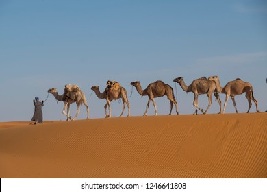 camel Caravan isolated on summit if dune in the Sahara desert landscape