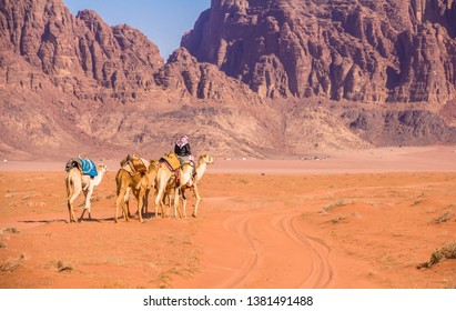 Camel caravan in majestic Wadi Rum, aka Valley of the Moon, a protected nature reserve with dramatic sandstone mountains and granite rock. The largest wadi in Jordan