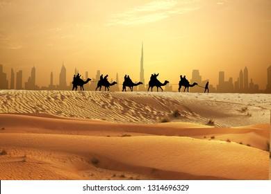 Camel caravan on sand dunes on Arabian dessert with Dubai skyline at sunset