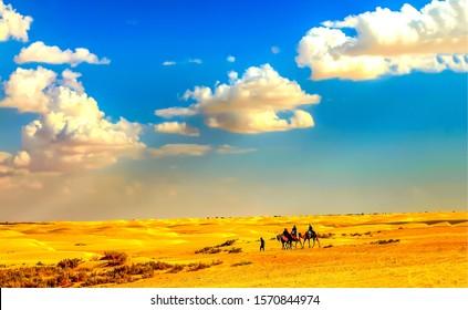 Camel caravan in sand desert. Camel caravan in desert. Camel caravan view. Sand desert camel caravan scene