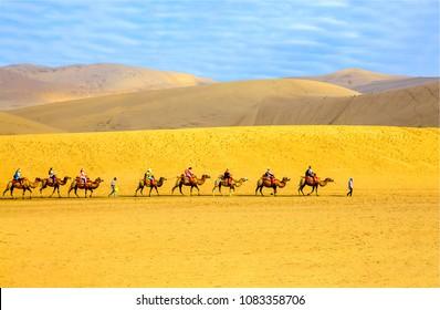 Camel caravan in sand dune desert landscape. Sand desert dune camel caravan ride