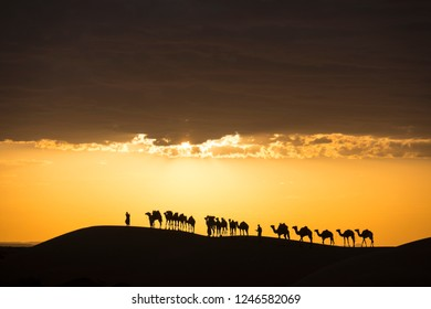 camel caravane inthe desert in front of amazing sunset