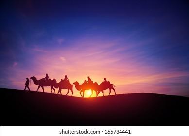 camel caravans traveling in the desert in sunset