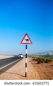 Camel crossing street sign in Abu Dhabi desert.