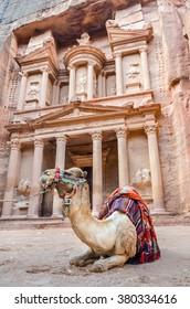 A camel (one hump dromedary) rests in front of the Treasury, one of the several temples in the ancient Nabatean city of Petra, Jordan