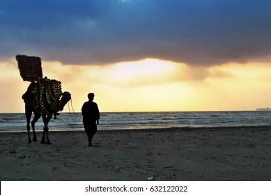 Camel ride at clifton beach Karachi, Pakistan 21/09/2011