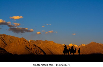 A camel ride at the Sand Dunes of Hunder in Nubra Valley in Ladakh, Jammu and Kashmir (India). Hunder is known for presence of Bactrian (double humped) camels.