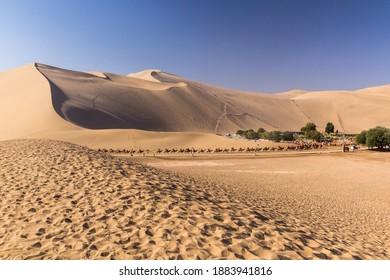 Camel rides at Singing Sands Dune near Dunhuang, Gansu Province, China