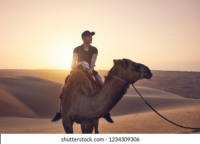 Camel riding in desert at amazing sunset. Young man enjoying journey on sand dunes. Wahiba Sands in Sultanate of Oman