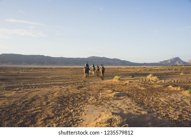 Camel riding in Zagora desert in Morocco. Camels are walkin in hot desert. View of the desert with mountain and clear sky. MOROCCO