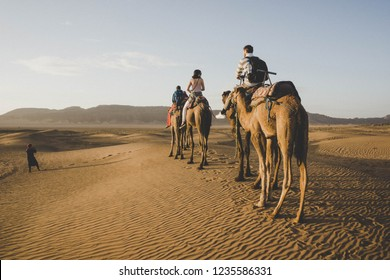 Camel riding in Zagora desert in Morocco. Camels are walkin in hot desert. View of the desert with mountain and clear sky. Tourists riding camels in desert. MOROCCO