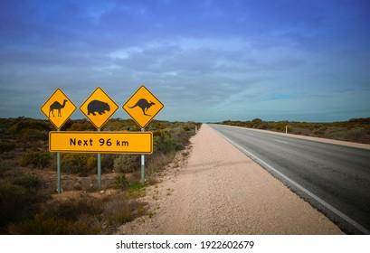 Signe chameau, roman et wombat. Une scène classique quand on conduit dans l'arrière-pays en Australie avertissant de Camels, Kangaroos et Wombats traverser la route.