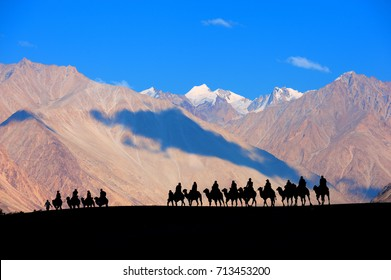 Camel safari in Nubra Valley, Ladakh, India