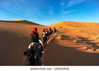 camel tour at Sahara Desert Morocco