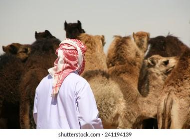 A camel trader at Al Ain camel market, UAE.