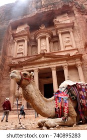 Camel at the Treasury in Petra