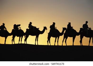 camel trekking in the desert Morocco, Sahara, Egypt Silhouettes