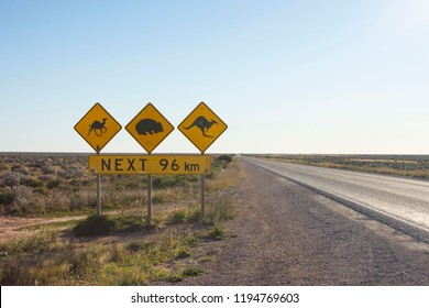 Camel, Wombat and Kangaroo crossing signs in Australia