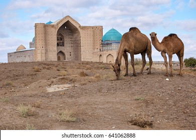 Camels in the background of the museum of Khoja Ahmed Yassaui