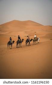 Camels caravan in Sahara desert. Sand dunes landscape in Sahara desert, Morocco