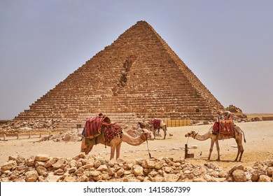 Camels in front of the Pyramid of Menkaure, the smallest of the three pyramids of Giza, Giza Plateau, Cairo, Egypt