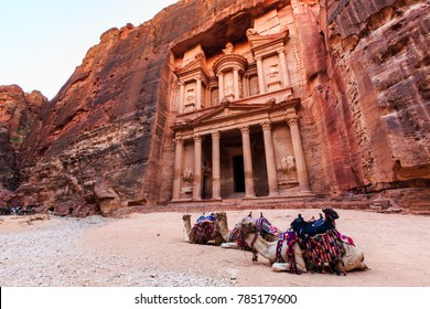 Camels in front of the Treasury at Petra the ancient City  Al Khazneh in Jordan lit by the sun