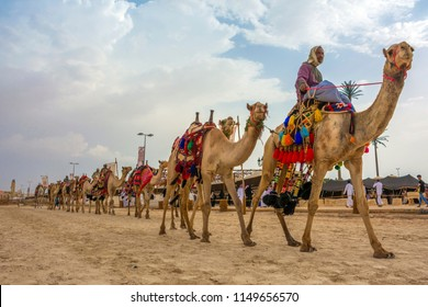 Camels march in Souk okaz historical festival in Taif, Saudi arabia (29-06-2018). The Souk Okaz festival in Taif is the re-birth of an ancient Arabian market dating back to Pre-Islamic times.
