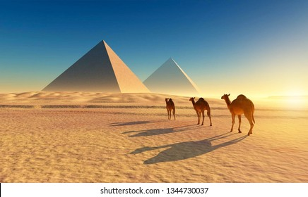 camels near pyramids in egyptian desert . The effects of Pharaonic