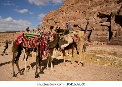 camels and its owner waiting for customer, petra, jordan, 2018 feb 17