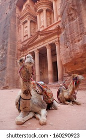 Camels, or rather dromedaries (Camelus dromedarius), waiting for tourists at Al Khazneh (the treasury).  Focus on the whiskers. Petra, Jordan. Probably built 2nd-3d Century AD.