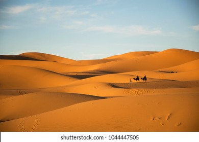 Camels with tourists in the sahara. Merzouga morocco. Evening in the desert. Scenic landscape. Golden light. Background desert scene, travel experience.
