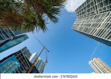 Camera facing directly up view of Downtown Miami highrise towers and palm trees