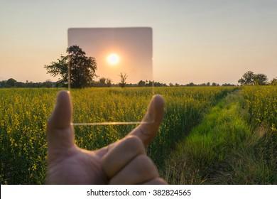camera Gradient Neutral Density ND Filter test on yellow flower landscape