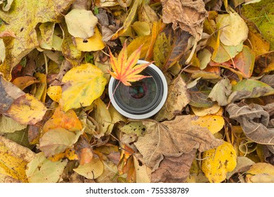 A camera lens over a colored leaves background in autumnal environment