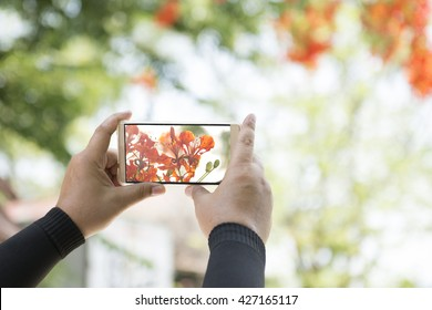 The camera on the phone, Technology makes taking pictures easier with a camera phone. The camera phone can zoom for distant subjects.