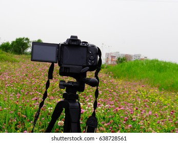 A camera on a tripod shoot nature at spring time.