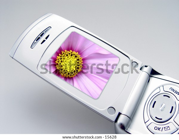 Camera Phone with Picture of flower on the screen, cellular phone, isolated on white background