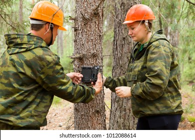 Camera traps with infrared light and a motion detector attached by straps on a tree . Foresters install photo traps on a tree for automatic photographing or video shooting of wildlife in the forest.