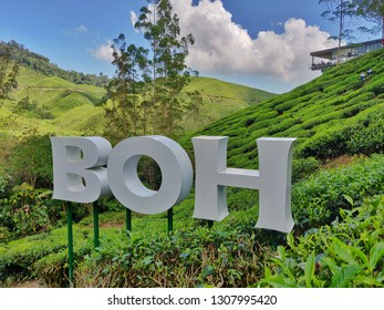 Cameron Highlands, Malaysia 08 Feb 2019: BOH Tea Plantation is a must-visit place when you are in Cameron Highlands Scenic. Boh is the largest tea plantation in Southeast Asia