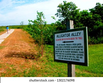 Cameron Parish, Louisiana, USA, Creole Nature Trail, National Scenic Byway, Sabine National Wildlife Refuge, Wetland Walkway, Alligator Alley, June 14, 2004
