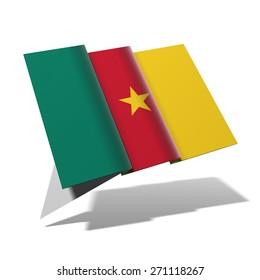 Cameroon flag 3D banner