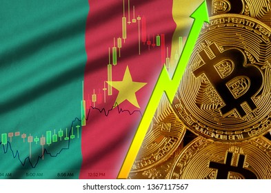 Cameroon flag and cryptocurrency growing trend with many golden bitcoins