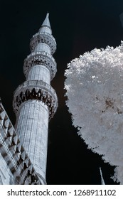 cami camii minaret with snowy tree holy mosque infrared photo