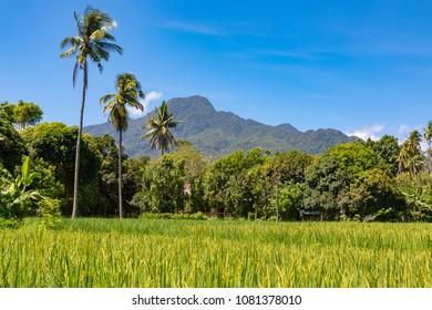 CamiguinPhilippinesApril 24, 2018Mountain scenery, showing Mount Mambajao
