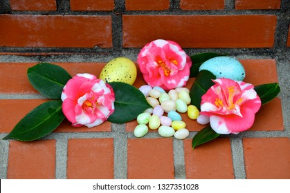 Camilla blooms with pastel jellybeans and Easter eggs.