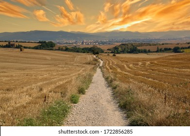 The Camino de Santiago during sunrise in Navarra, Spain